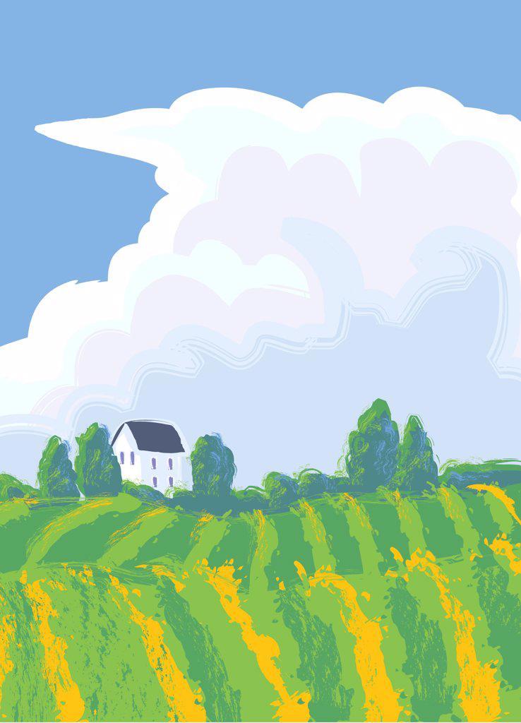Summerstorm, illustration : Stock Photo