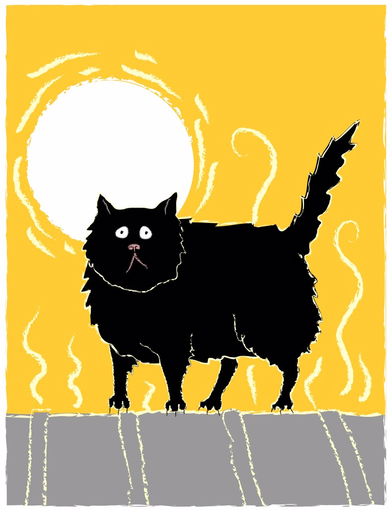 Stock Photo: 1501R-1277 Black cat on hot tin roof, illustration