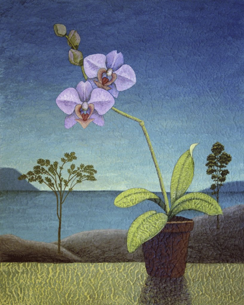 Stock Photo: 1521-110 Still Life with Orchid 2000 Helen Lurye (20th C. Russian) Oil & acrylic on canvas Private Collection