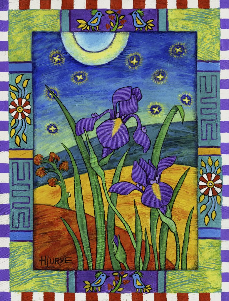 Stock Photo: 1521-112 Irises & Fireflies 