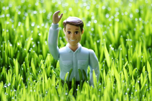 Stock Photo: 1522-123 Toy in a field with its hand raised