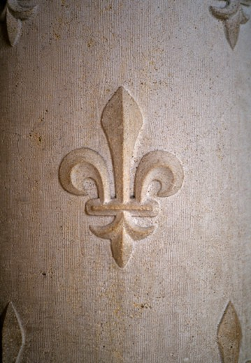 Close-up of a fleur-de-lis carving on a wall : Stock Photo