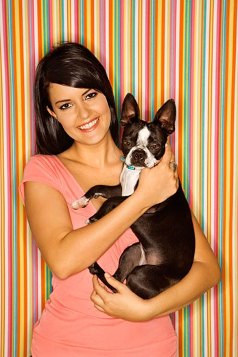 Young adult female Caucasian holding Boston Terrier dog on striped background. : Stock Photo