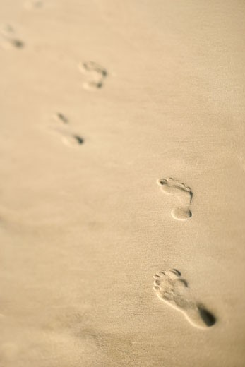 Stock Photo: 1525R-101963 Scenic sandy coastline with footprints.
