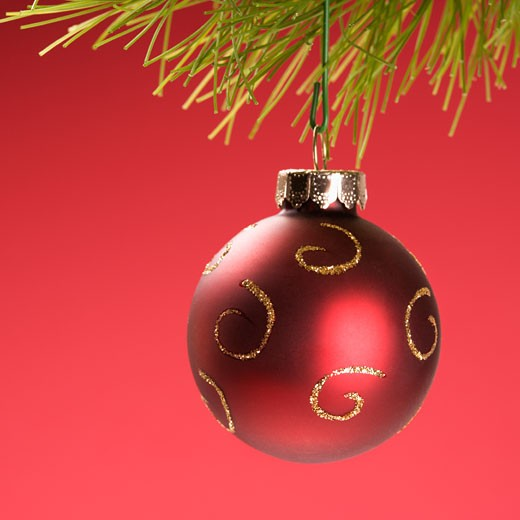 Still life of red Christmas ornament hanging from pine branch. : Stock Photo