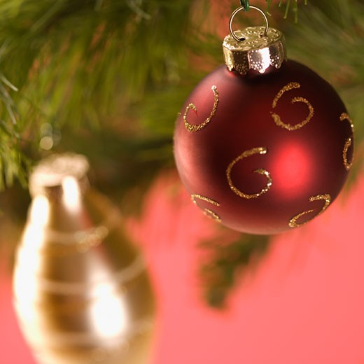 Stock Photo: 1525R-103868 Still life of red and gold Christmas ornaments hanging from pine branch.