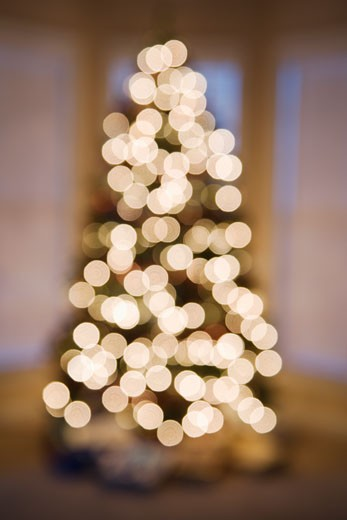 Stock Photo: 1525R-105904 Blurred abstract Christmas tree lights.