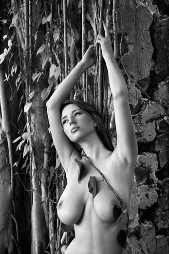 Stock Photo: 1525R-107351 Close up of young adult nude Caucasian woman holding onto vine in Maui.