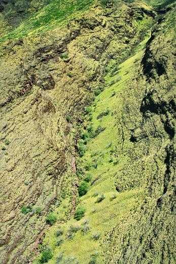 Aerial view of lush rainforest on Maui, Hawaii. : Stock Photo