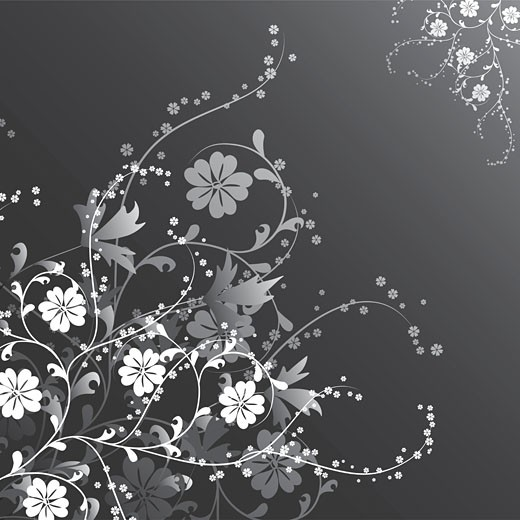 Stock Photo: 1525R-141418 Floral background, vector
