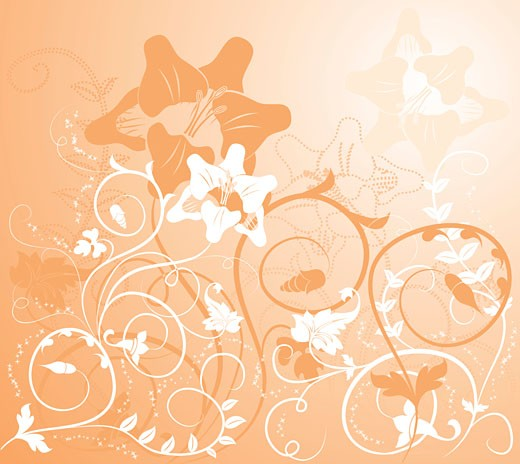 Background flower, elements for design : Stock Photo