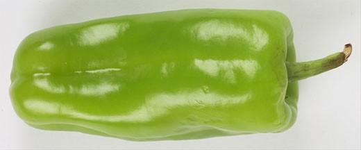 Anaheim pepper  : Stock Photo