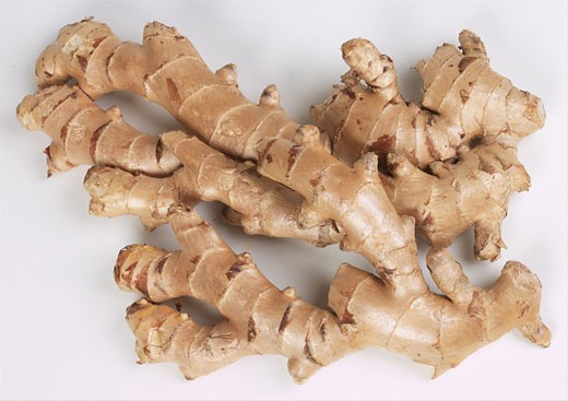 Stock Photo: 1525R-14908 ginger