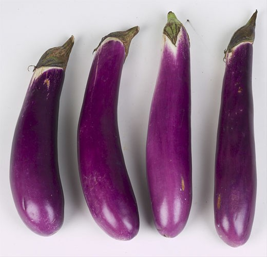 Stock Photo: 1525R-14945 Chinese eggplant