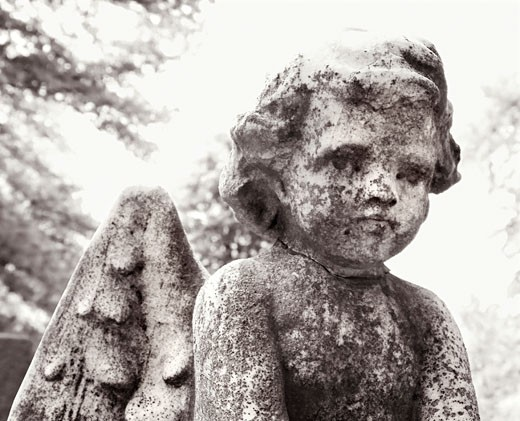 Close-up of cherub statue in graveyard. : Stock Photo