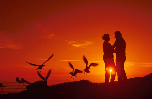 elderly couple watching a sunset : Stock Photo