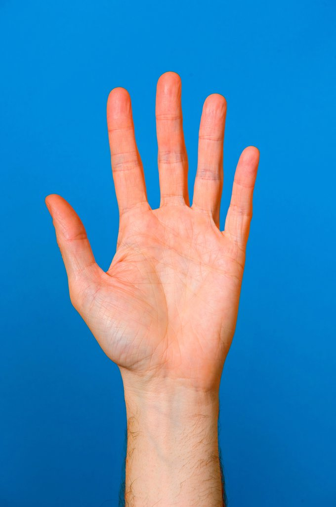 Palm of outstretched hand on blue background. : Stock Photo