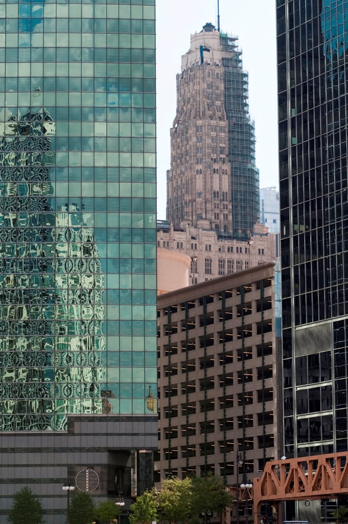 Stock Photo: 1525R-196069 Chicago Buildings
