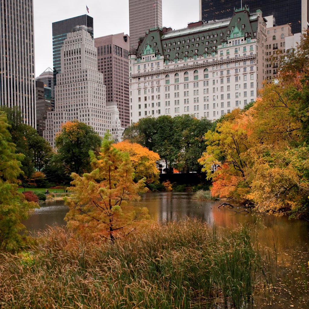 Stock Photo: 1525R-197374 Autumn in Central Park in Manhattan, New York City, U.S.A.