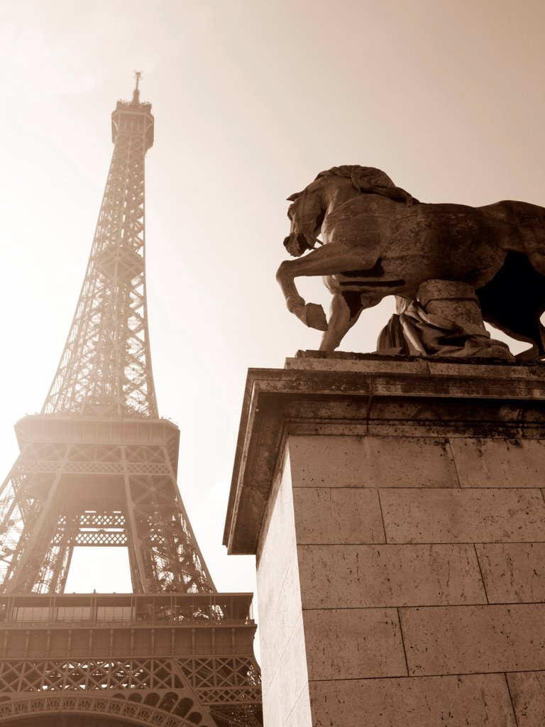 Statue of horse by Eiffel Tower : Stock Photo