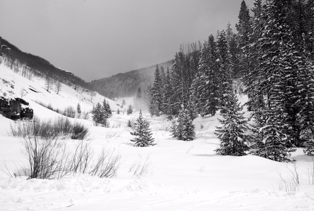 Stock Photo: 1525R-200004 Snow covered mountainside in Vail, Colorado
