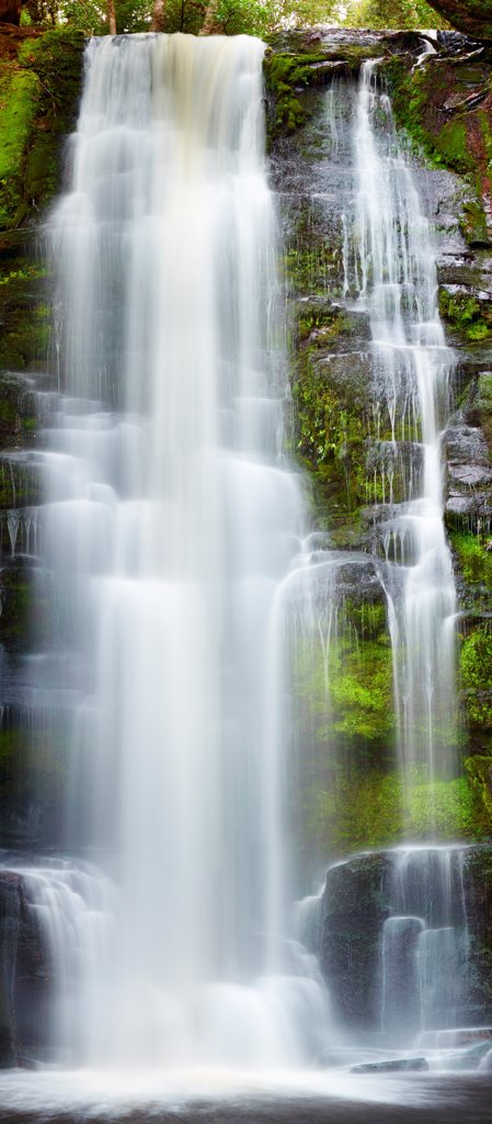Stock Photo: 1525R-201942 Waterfall in primeval forest, New Zealand