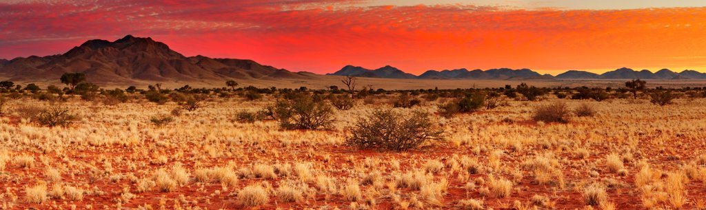 Stock Photo: 1525R-202021 Colorful sunset in Kalahari Desert, Namibia