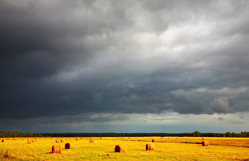 Stock Photo: 1525R-202372 Landscape with hayfield and storm clouds