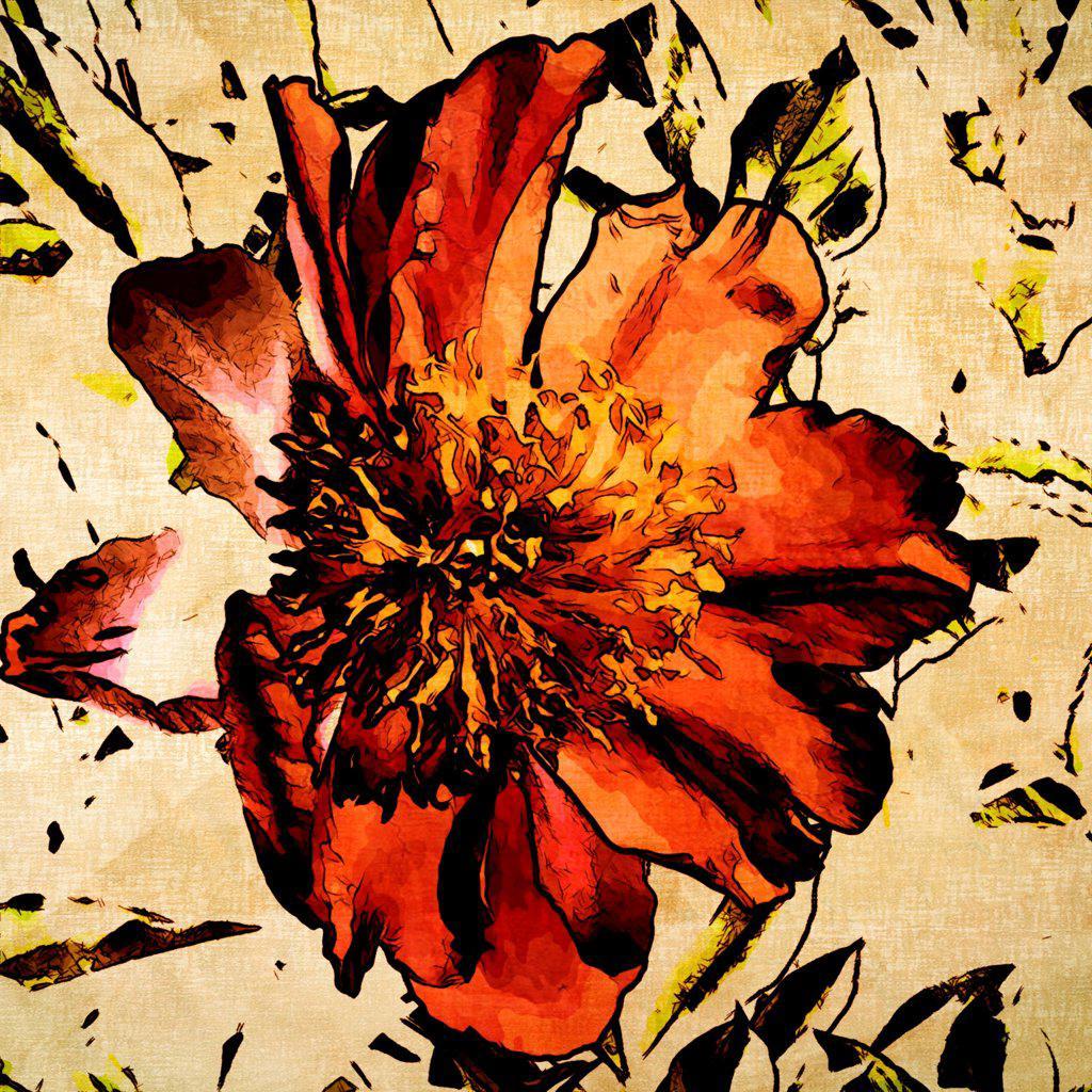 Stock Photo: 1525R-211041 art grunge floral vintage background texture
