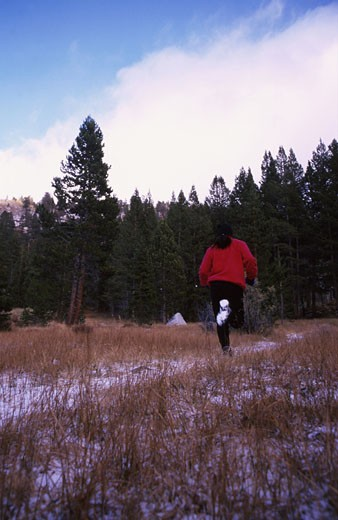 Winter Runner : Stock Photo