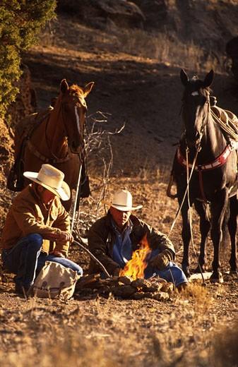Campfire : Stock Photo