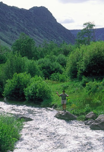 Stock Photo: 1525R-41965 Fly Fishing In A Mountain River