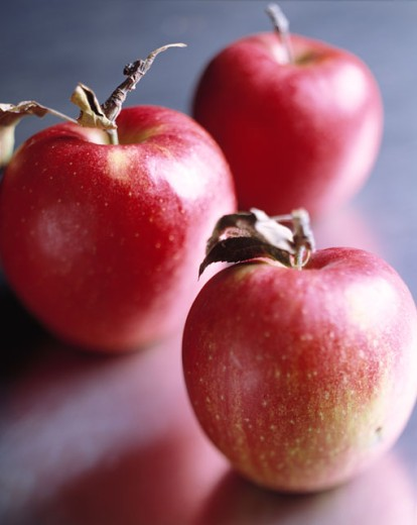 Stock Photo: 1525R-42827 Ripe Apples