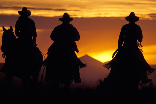 Cowboys Riding the Range : Stock Photo