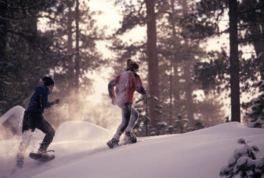 Snowshoeing in the Forest : Stock Photo