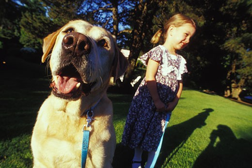 Stock Photo: 1525R-46163 Little Girl With Dog on Leash