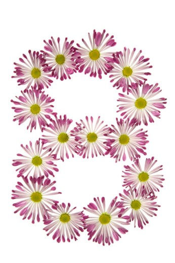 Stock Photo: 1525R-71799 An Eight Made Of Pink And White Daisies