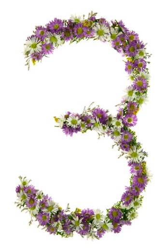 Number Three In A Purple And White Flower Font : Stock Photo