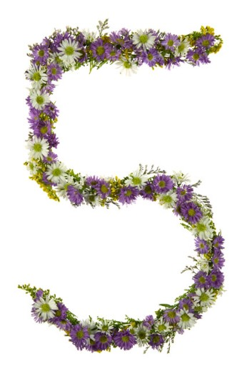 Number Five In A Purple And White Flower Font : Stock Photo