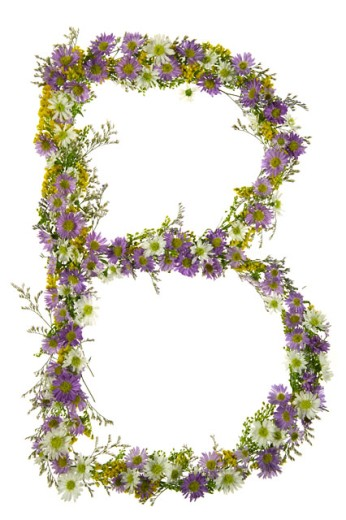 Letter B In A Purple And White Flower Font : Stock Photo