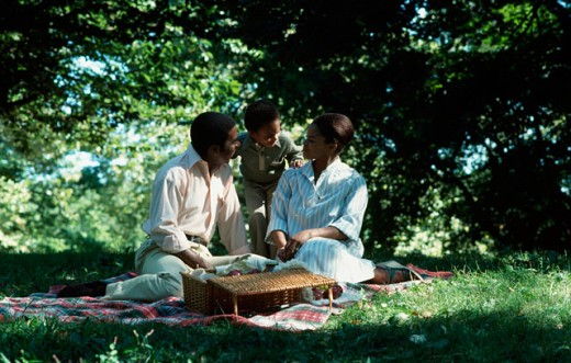 Parents with their son at a picnic : Stock Photo