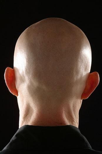 Stock Photo: 1525R-95694 Bald head