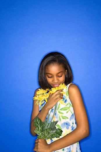 Stock Photo: 1525R-99496 Portrait of African-American teen girl smelling a bouquet of daisies standing against a blue background.