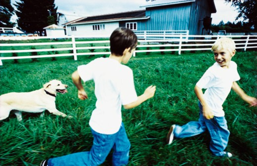 Stock Photo: 1527R-012668 Two Young Boys with Their Dog Playing on a Farm