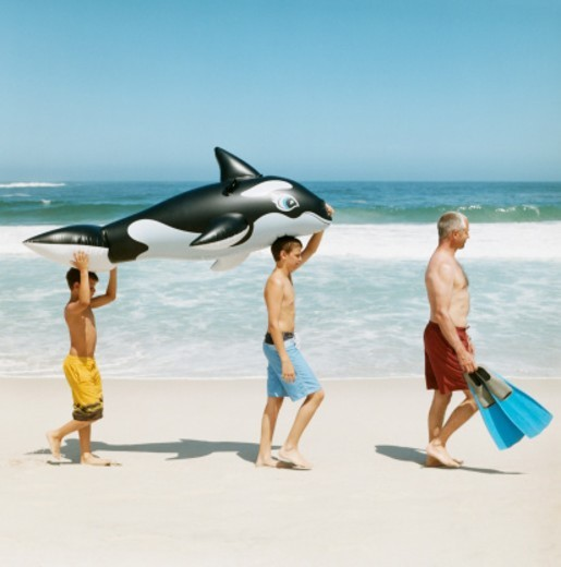Boys Carrying an Animal Inflatable Following Their Father Carrying Swimming Flippers on a Beach : Stock Photo