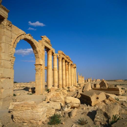 Stock Photo: 1527R-016593 Classical Columns, Palmyra, Syria