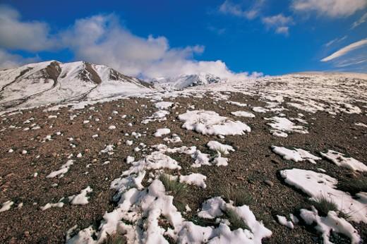 Stock Photo: 1527R-04558 Denali National Park, Alaska, USA
