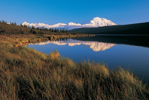 Lake and Mt McKinley, Denali National Park, Alaska, USA : Stock Photo