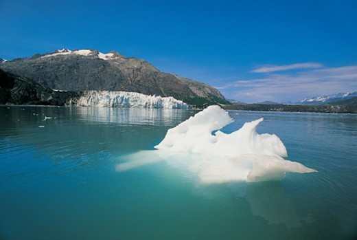 Stock Photo: 1527R-04580 Glacier Ice Floating in Water of Tarr Inlet, Glacier Bay National Park, Alaska