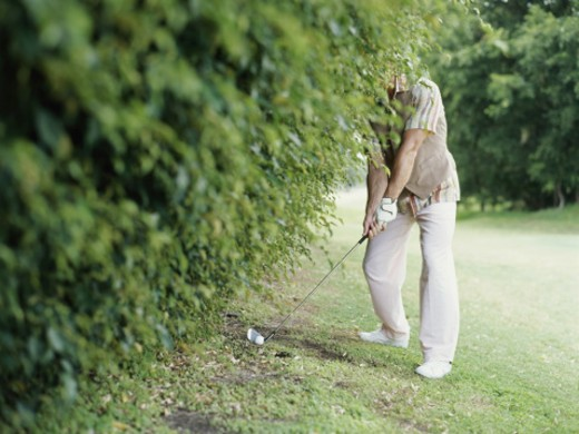 Man beside hedge preparing to hit golf ball, head obscured : Stock Photo
